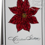 VIDEO: Poinsettia WOW Christmas Card