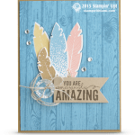 CARD: You're Amazing Four Feathers