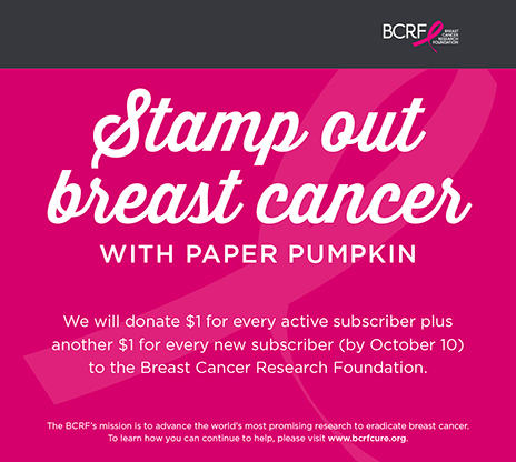 PAPER PUMPKIN IS GOING PINK! Help us support BCRF (Breast Cancer Research Foundation). Subscribe to Paper Pumpkin by October 10 and we will donate $1 for every active subscriber plus another $1 for every new subscriber!