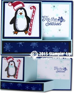 snow place pull out - blue- stampin up