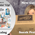 VIDEO & GIVEAWAY: New 2016 Stampin Up Catalog Sneak Peek Haul