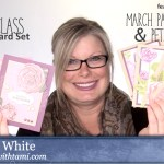 ONLINE CLASS: 8 Card Mega Class and alternate Paper Pumpkin Set and more
