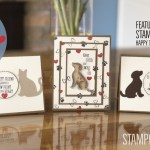 VIDEO: How to make a set of Paw Print on My Heart Cards