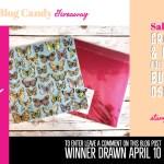 BLOG CANDY GIVEAWAY:  Painted Season Designer Paper Bundle