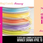 BLOG CANDY GIVEAWAY:  Sold Out SAB Organdy Ribbon Pack