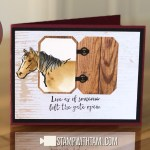VIDEO: How to make an horse stable card with the Live to Ride stamp set
