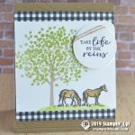 CARD: Take life by the reins horse card from the Let it Ride stamps