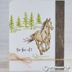 CARD: Go For It card from the Let It Ride Horse Card