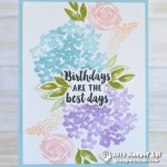 CARD: Birthdays are the Best Days from Beautiful Friendship
