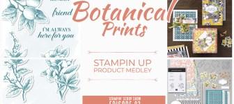 Stampin Scoop Video: Exploring the beautiful Botanical Prints Medley