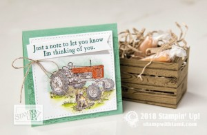 11stampin up new catalog ideas