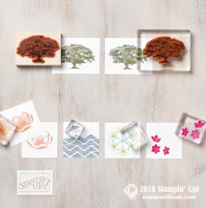 1stampin up new catalog ideas