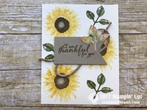 stampin up autumn harvest stamp set cards7