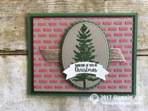 stampin up holiday catalog cards45