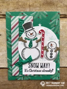 stampin up stampin Stampin Up Snow Place Stamp set