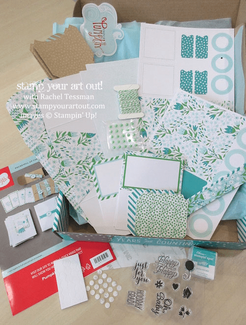 The March 2016 Pocket Full Of Cheer Paper Pumpkin kit contents…#stampyourartout #stampinup - Stampin' Up!® - Stamp Your Art Out! www.stampyourartout.com