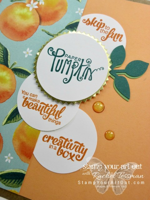 My gift box that each attendee received at my 2017 Paper Pumpkin Palooza event!...#stampyourartout #stampinup - Stampin' Up!® - Stamp Your Art Out! www.stampyourartout.com