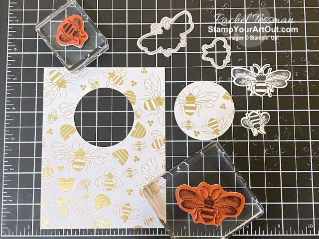 """Click here to see close-up photos cards featuring the """"spotlighting technique"""" that I sent to my online club members using the new Honey Bee Stamp Set, Detailed Bees Dies, Golden Honey Designer Paper (free during Sale-a-Bration), and Blends Markers . Access measurements, directions, and a list of supplies I used linked to my online store. - Stampin' Up!® - Stamp Your Art Out! www.stampyourartout.com"""