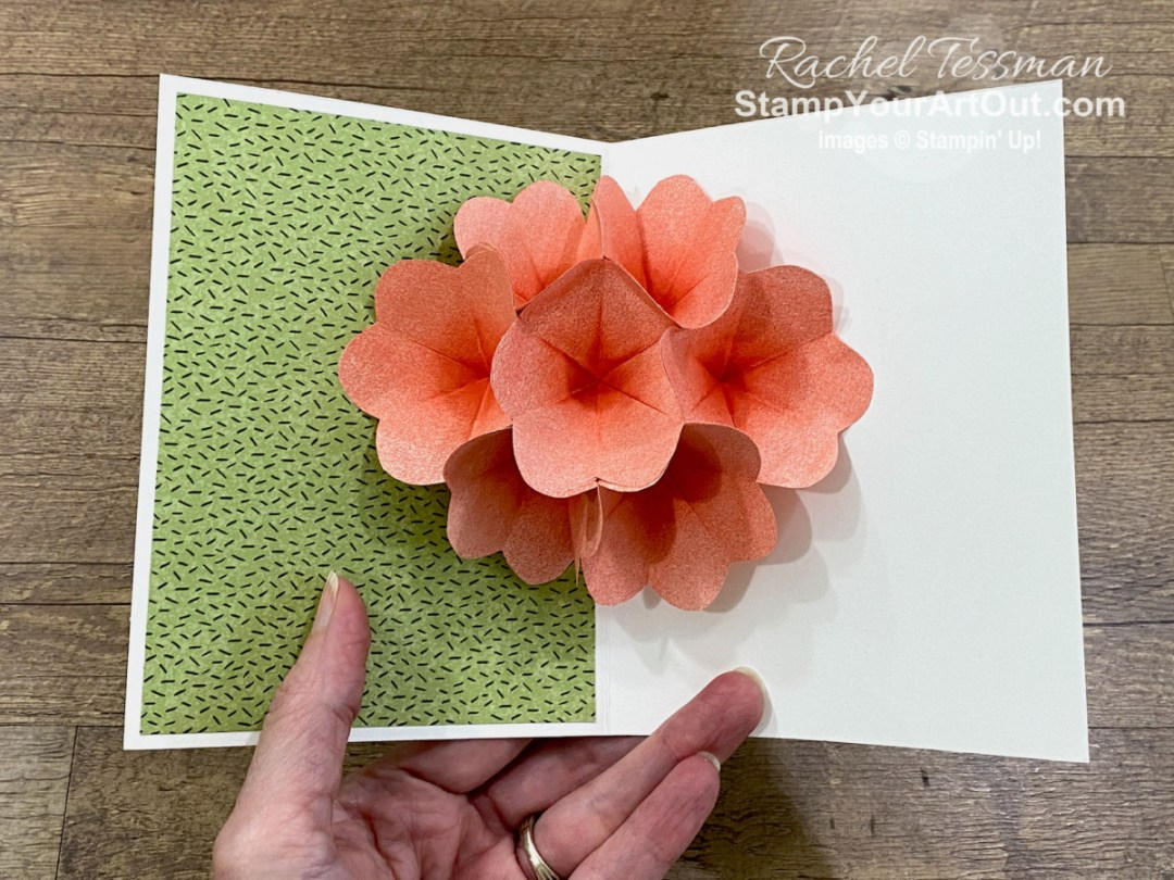 All Star Tutorial Blog Hop April 2021 featuring the Flowering Cactus Medley of products from Stampin' Up!'s Jan-June 2021 Mini Catalog. Click here to see how to use these products and some thin copy paper (sponged, folded, and cut) to make a cactus-themed birthday card that opens to reveal a bunch of blooming cactus flowers. Access measurements, a how-to video with tips and tricks, other close-up photos, and links to all the products I used. Learn how to grab up the awesome exclusive tutorial bundle. AND see other great ideas with this suite shared by the eleven others in our tutorial group! - Stampin' Up!® - Stamp Your Art Out! www.stampyourartout.com