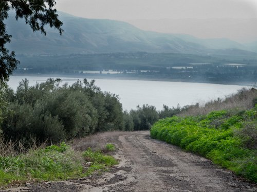 Back road through Kibbutz Degania fields toward the shore.