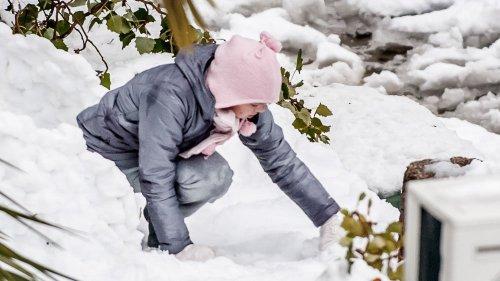 snow_13121446