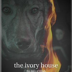 Juttah, the wild Jerusalem dog, as she appears on The Ivory House book cover