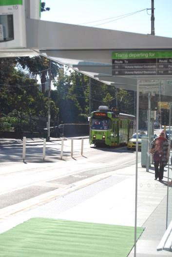Wicked tram arrives