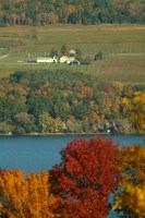 Photo of Standing Stone VIneyards from across Seneca Lake with foliage in foreground