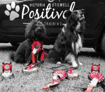 Indie & Darcy winning trophy's at agility!