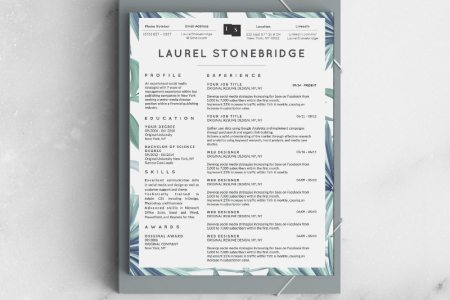 Laurel Stonebridge Resume Template Vol  I   Stand Out Shop RESUME TEMPLATE