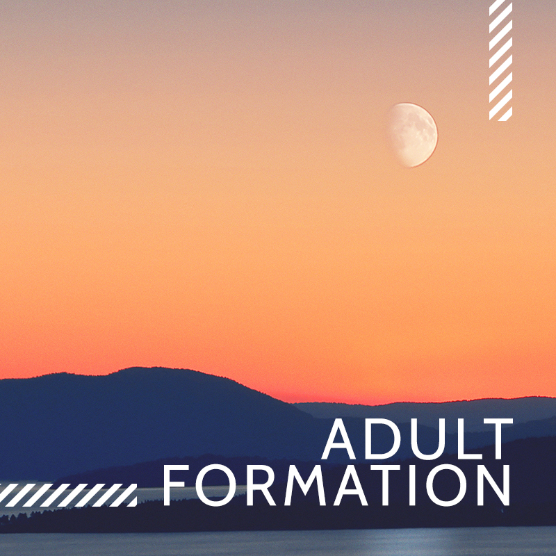Learn_Adult Formation