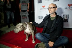 Moby & Angel