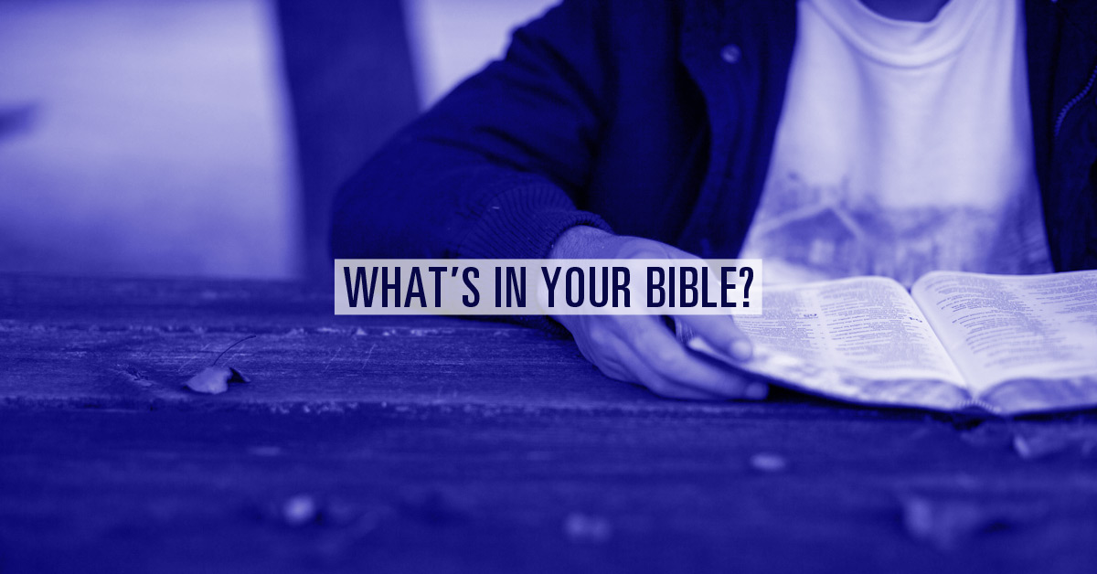 What's in Your Bible?