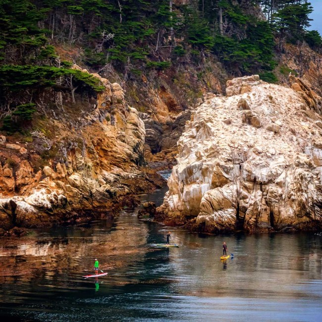 Brent Allen Kelp Beds and Clean Waters, paddlers, Carmel by the Sea