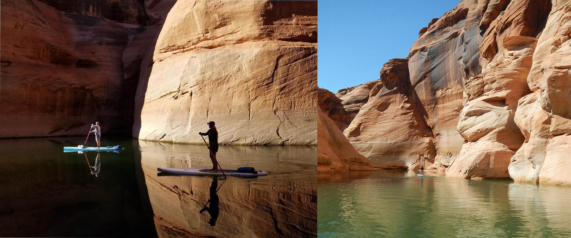 Owl swimming in slot canyon in lake powell cast casino royale james bond