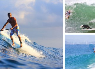 boys of noosa header