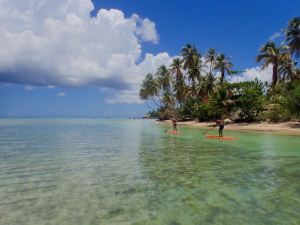 Stand Up Paddle Dream
