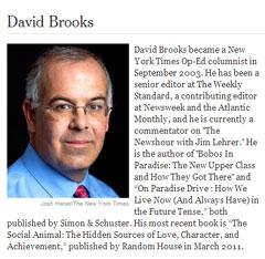 david-brooks-bio