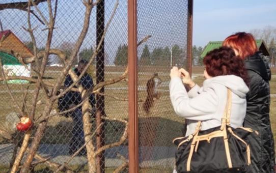 В прошлом году центр экологического туризма «Станьково» в Дзержинском районе посетили 110 тыс. человек