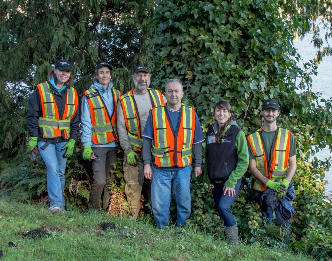 Tree Ivy Crew &copy Michael Schmidt