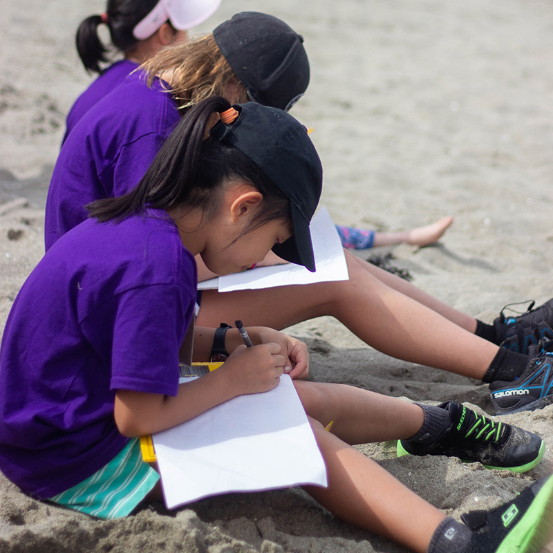 Camps and clubs to help kids connect with nature