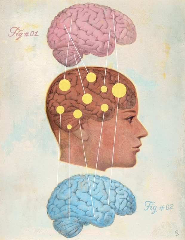 How Men S And Women S Brains Are Different Stanford Medicine
