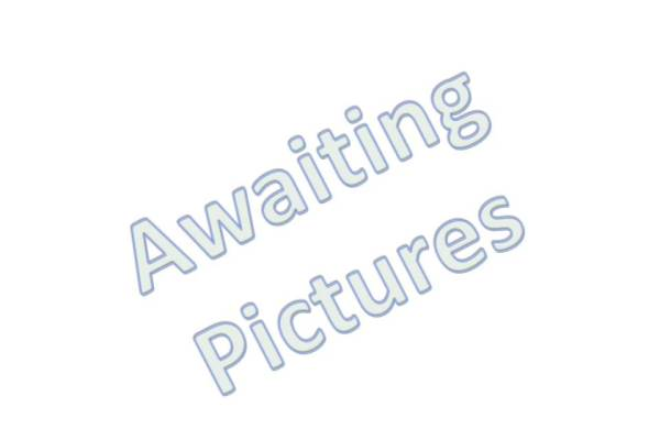 Awaiting Pictures