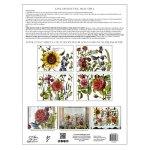 Botanist Journal (Pad 12×16)