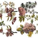 Floral Anthology (Pad 12×16)