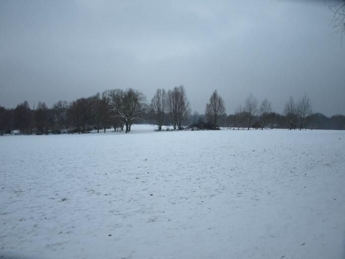 Heath snow 12:10.JPG