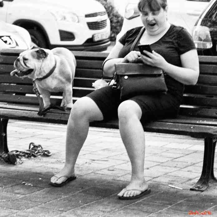 Like owner, like dog1.jpg