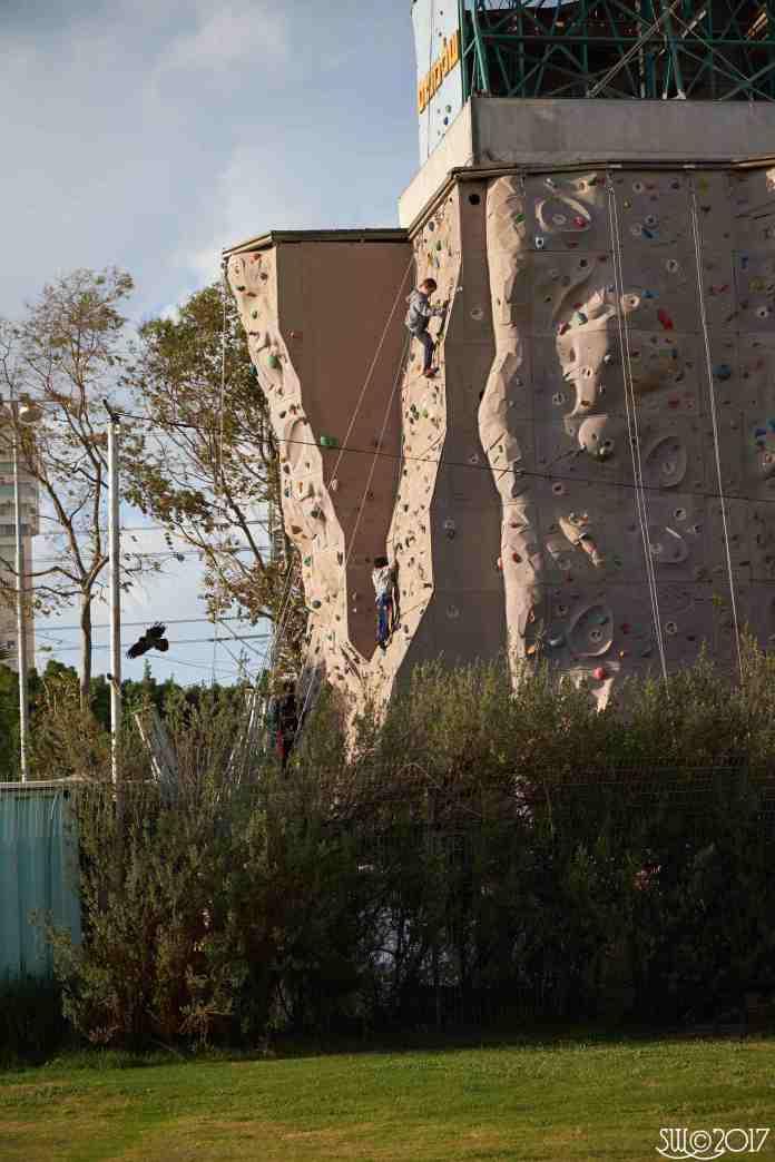 Climbing wall, Yarqon Park1