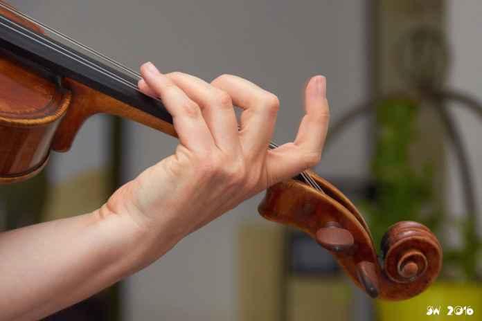 Viola fingers