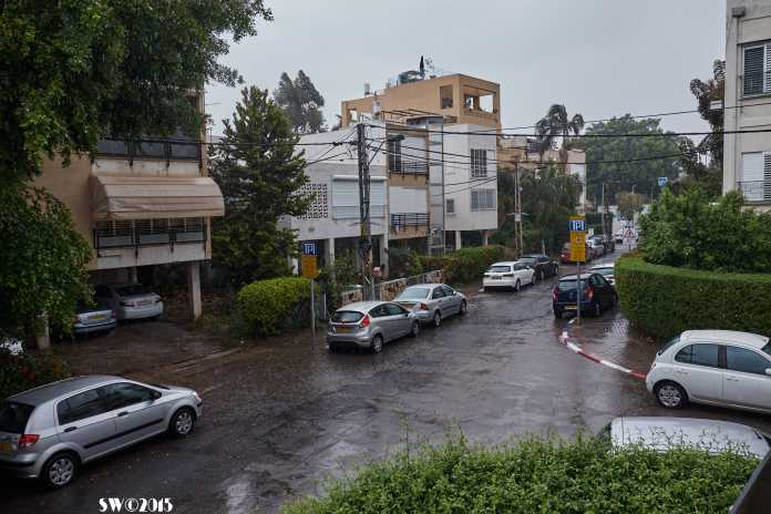Shlomtzion rain